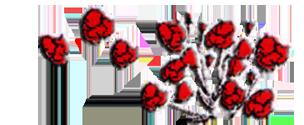 Blütenmeer Vierke GbR Logo