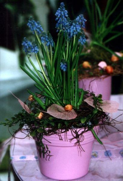 Beispiel: Frühling & Osternstäuße, Kränze