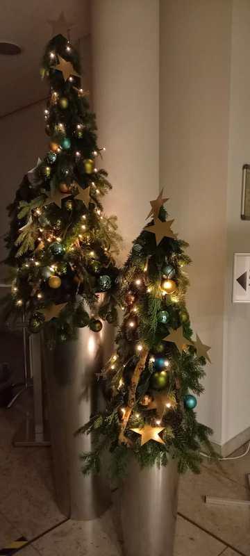 Weihnachtsbäume mit Dekoration und Lichterkette